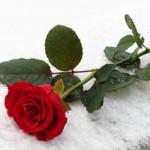 """""""марте"""" - стихи о весне"""